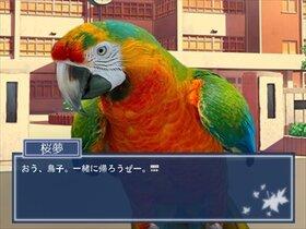 鳥愛学園 ~鳥の取りあい~ Game Screen Shot4