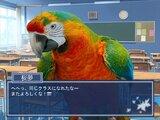 鳥愛学園 ~鳥の取りあい~