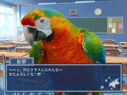 鳥愛学園 ~鳥の取りあい~ Game Screen Shots