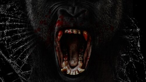 ゴリラのレクイエム3D(Requiem of a gorilla)(大猩猩的安魂曲) Game Screen Shot5