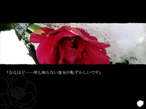 花盗人 Game Screen Shot2