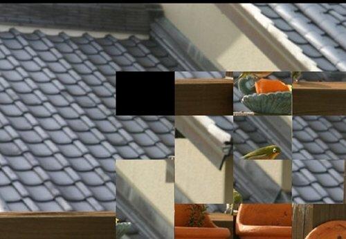 あせってかん Game Screen Shot1