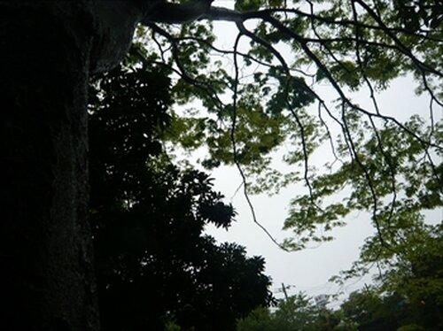 モノラル虹彩 Game Screen Shot3