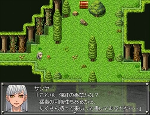 ChaosSealⅡ~The Outsider~体験版 Game Screen Shot5