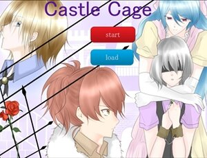 Castle cage Game Screen Shot