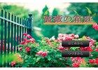 薔薇の箱庭