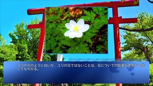 コトノ葉カナター体験版ー Game Screen Shot2