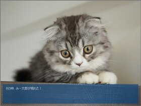 猫とたいぴんぐっ!!(サンプル版) Game Screen Shot5