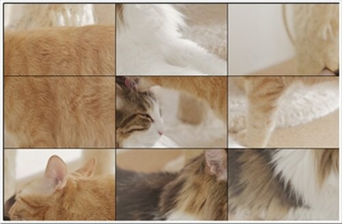 入れ替えパズル Game Screen Shot3
