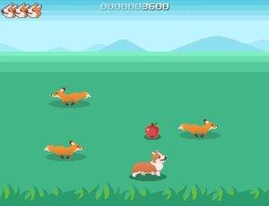 CORGI JUMP Game Screen Shot