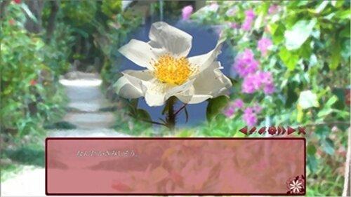花は誰そ彼に死折れる子。 Game Screen Shot3