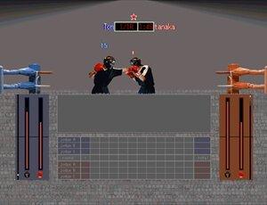 SAMURAI BOXING Game Screen Shot