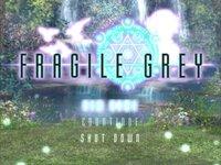 FRAGILE GREY -完全版- ver1.05のゲーム画面