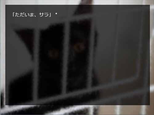 愛しのサラ Game Screen Shot1