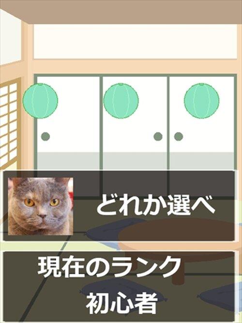 シャッフル猫 Game Screen Shot2