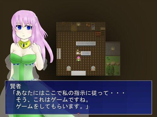 プランセス リベラシオン Game Screen Shot1