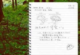 よながさま Game Screen Shot4