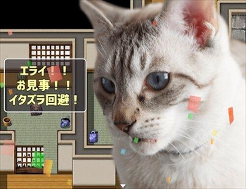 猫飼いシミュレーション Game Screen Shots