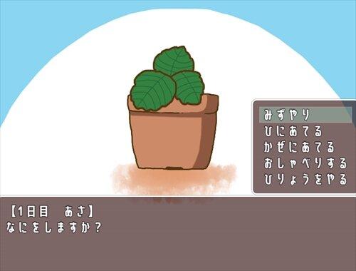 だいふくさんといちご【育成ゲーム】 Game Screen Shot1