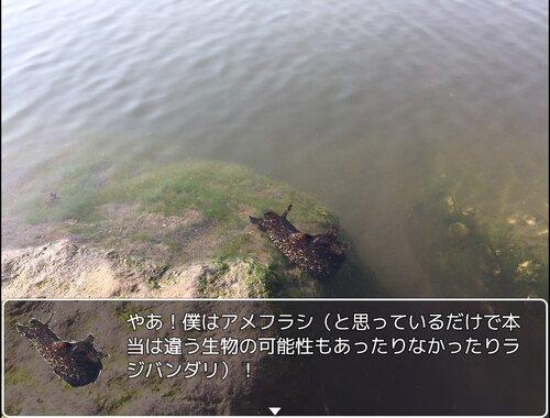 海岸で見つけたアメフラシみたいなやつ Game Screen Shot2