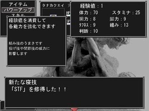 プロレスオブファイア 究極竜の戦士 Game Screen Shot3