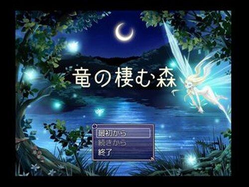 竜の棲む森 Game Screen Shot2