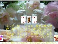『ひとり占い』~今日を占う3枚のカード